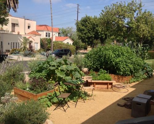 Garden071213